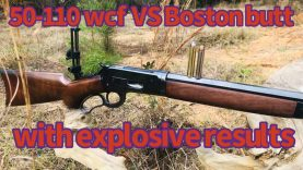 350 gr Hawk Bullet vs Boston butt from this 1886 Winchester in 50-110 caliber