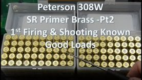 Peterson 308W SRP Brass- pt2     1st firing and known good loads