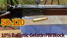 The 50-110 350 gr Hawk bullet vs the 350 gr Raptor, vs ballistic gelatin