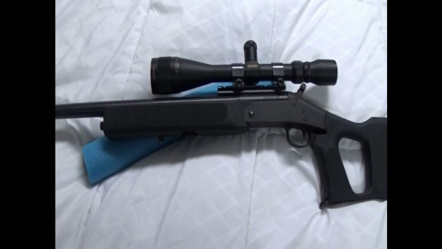 NEF Handi Rifle  223 Remington Survivor