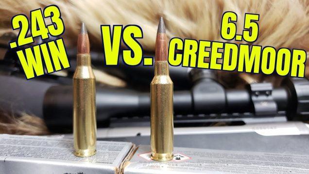 .243 Winchester vs. 6.5 Creedmoor Episode II Winchester Deer Season