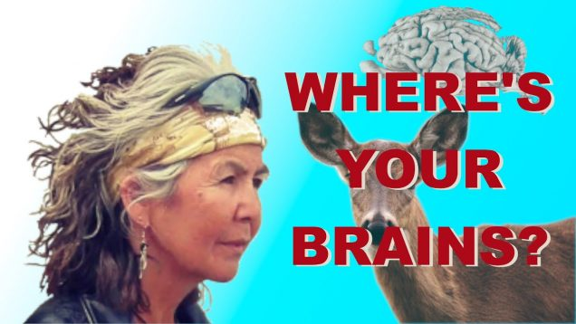 Where's Your Brains?