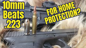 10mm vs. .223 for Home Defense