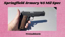 Springfield 45acp Mil Spec