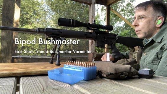 WCChapin   Bipod Bushmaster – First Shots from a Bushmaster Varminter