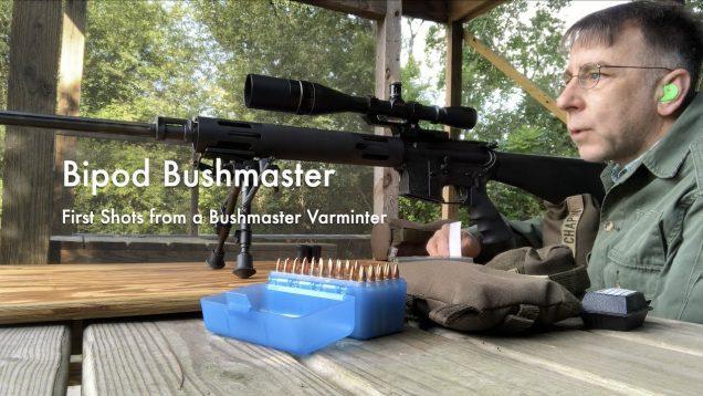 WCChapin | Bipod Bushmaster – First Shots from a Bushmaster Varminter
