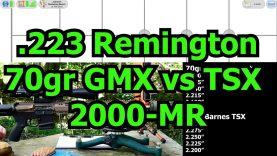 223 Rem – 70gr Hornady GMX vs 70gr Barnes TSX