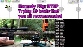 .223 Rem – 75gr Hornady BTHP with 19 powders