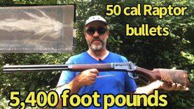 50-110 Winchester 350 gr Raptor in 10% Ballistic Gel