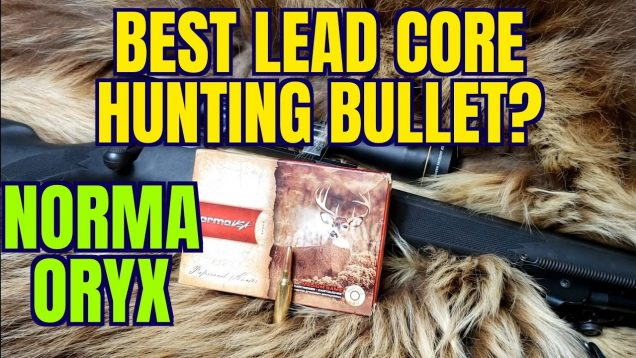 A Great Hunting Bullet! Norma Oryx 6.5-284