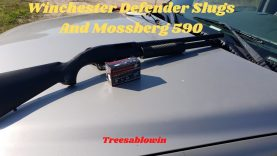 Winchester Defender Slugs