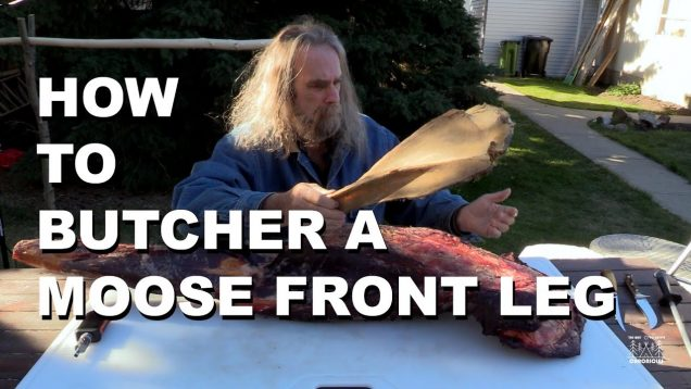 How To Butcher A Moose Front Leg