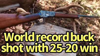 World Record Deer got with 25-20 WCF?